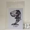 Mixade vykort - 13