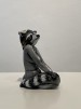 Djurkvinna 2: Tvättbjörn