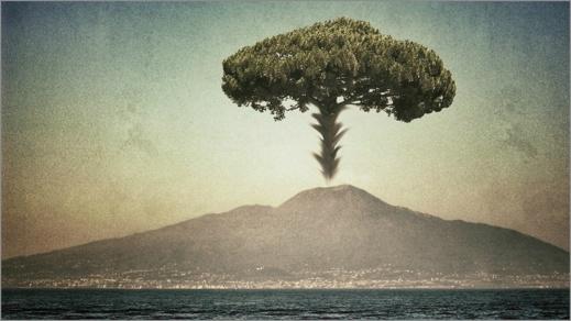 Vesuvius utbrott över staden Pompeji liknades vid ett träd - en paraplypinje