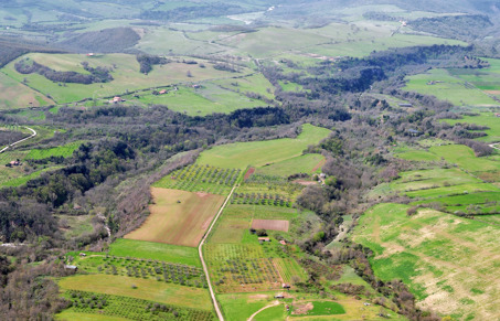 The Vignale plateau is today covered with vine plantations, olive grooves and orchards. Photo: The Vignale Aerial/Archaeological Project, VAAP.
