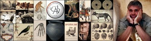 Arkeologi Historia blogg