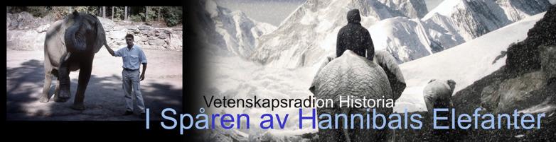 Hannibals elefanter över alperna sveriges radio