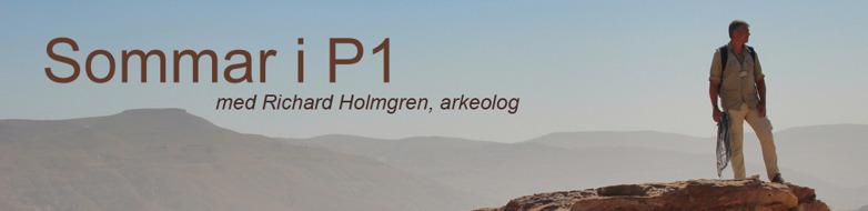Sommarpratare Richard Holmgren, arkeolog