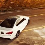 BMW_5 Series_VVSCV3_574