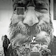FACES Beard
