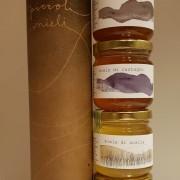 Fyra honungsorter i presentrör