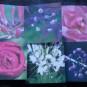 Blomsterkort - En av varje motiv (totalt 6 st)