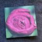 Blomsterkort - Pion 10 stycken