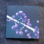 Blomsterkort - Glasbär 10 stycken