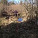 Melvin & Husse tränar viltspår