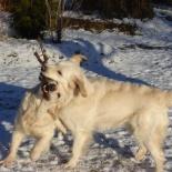 Freja & Lotta leker :)