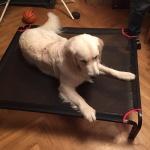 Douglas testar nya Hilmer sängen