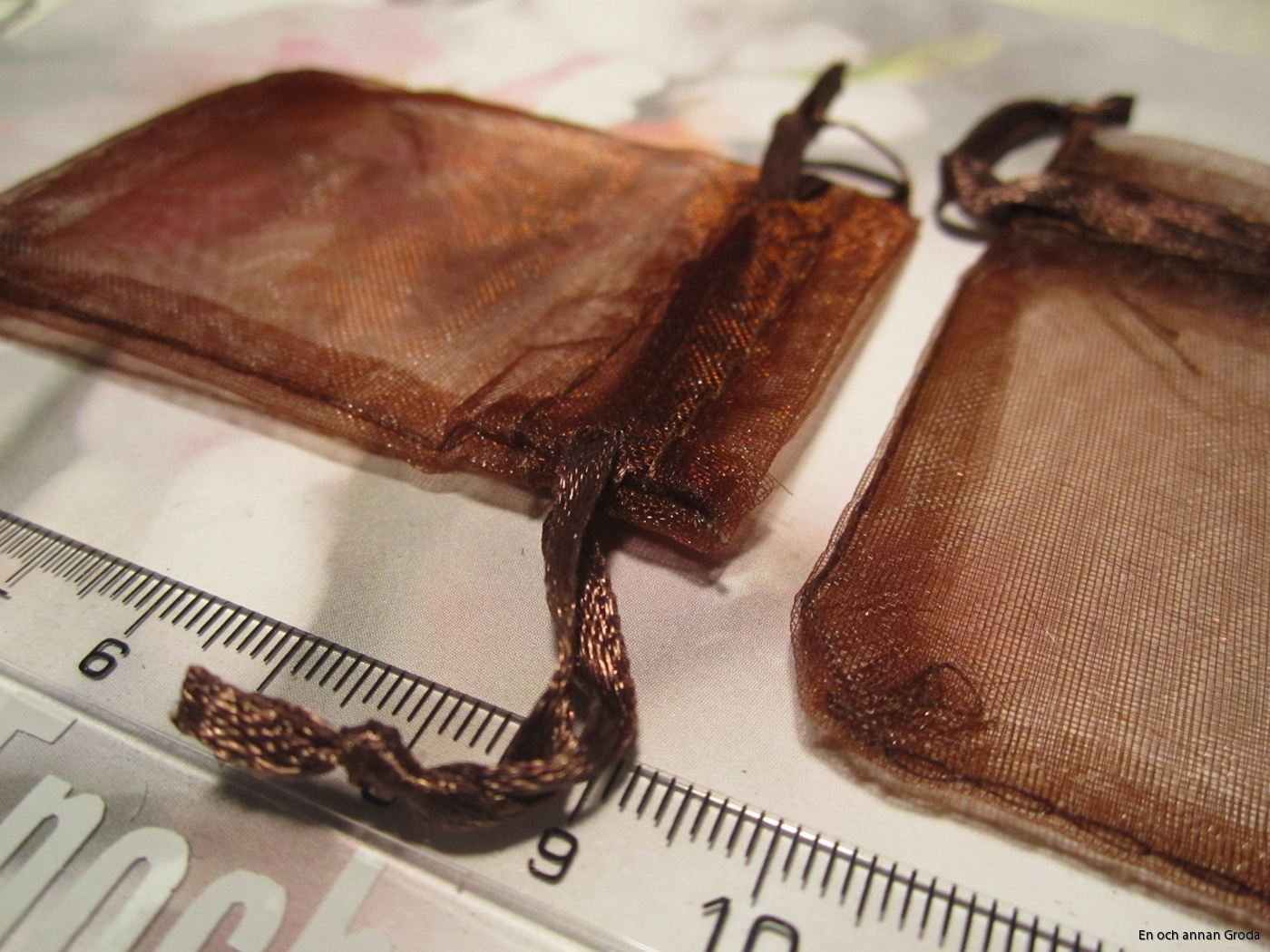 brun pr.p (2)