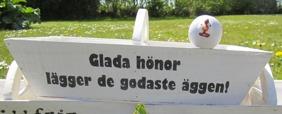 1st ÄGGKORG (trä) HÖNS/ANKA Frakt ingår! - nr 1 Glada hönor lägger de godaste äggen! (med liggande höna)