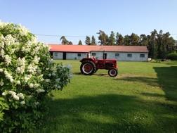 Alla gårdar måste ha en traktor