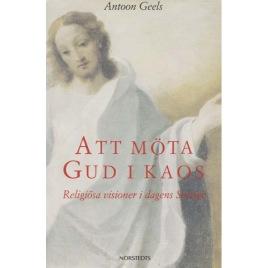 Geels, Antoon: Att möta Gud i kaos