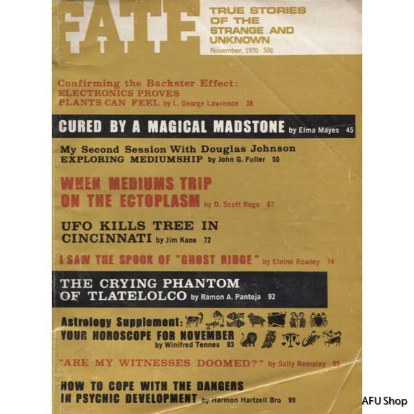 FateMagazineNov-70
