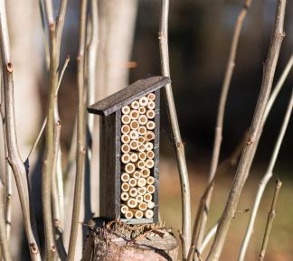 Insektshus för bin & humlor - Insektshus för bin & humlor