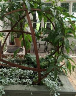 Växtstöd klot - Växtstöd klot, 30 cm