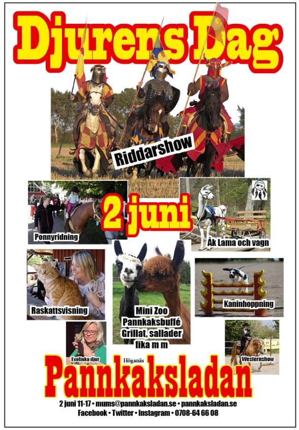Klicka på bilden för att se programmet för Djurens dag