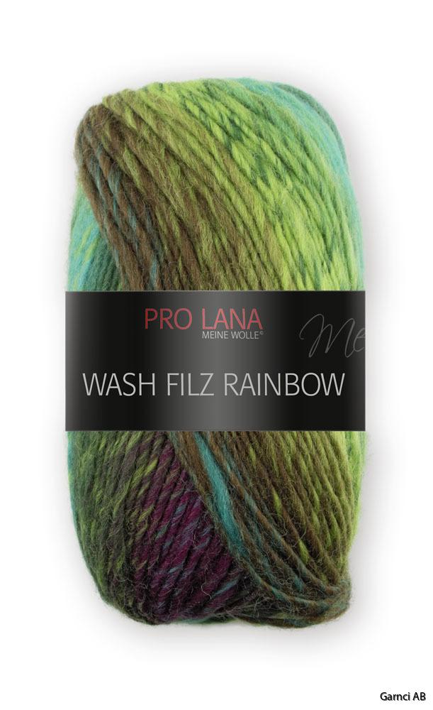 Rainbow 241