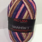 Tannheim 3