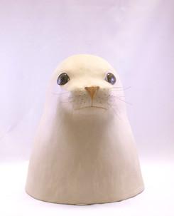 Säl - Seal