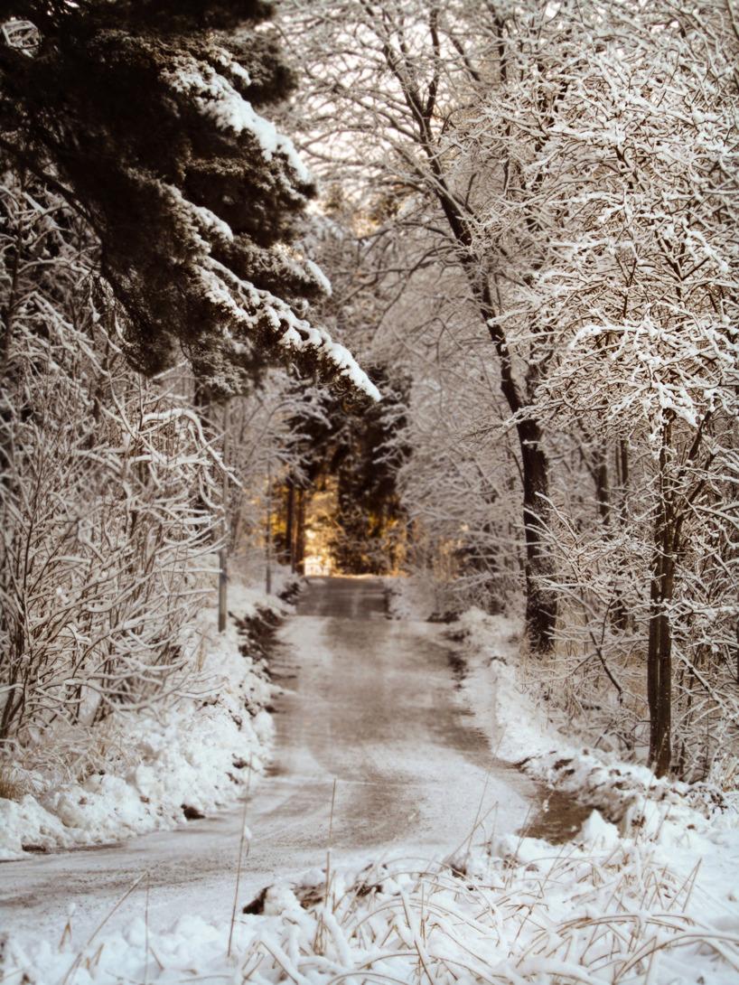 Foto/  Vintervit cykelväg