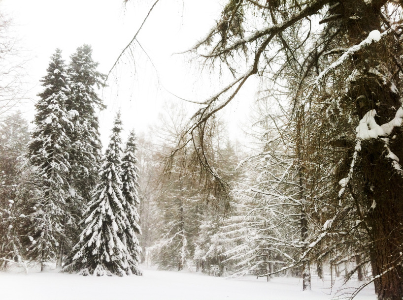 Snöig promenad genom Boulognerskogen