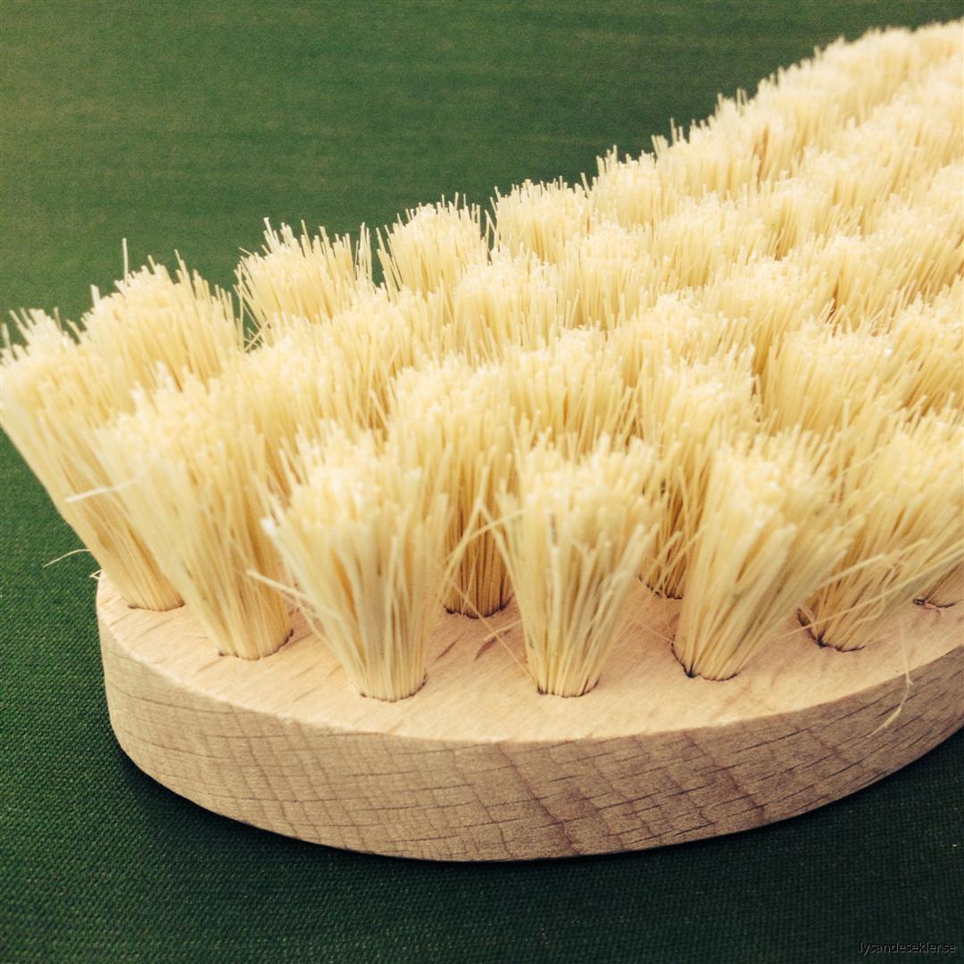 skurborste trä (2)