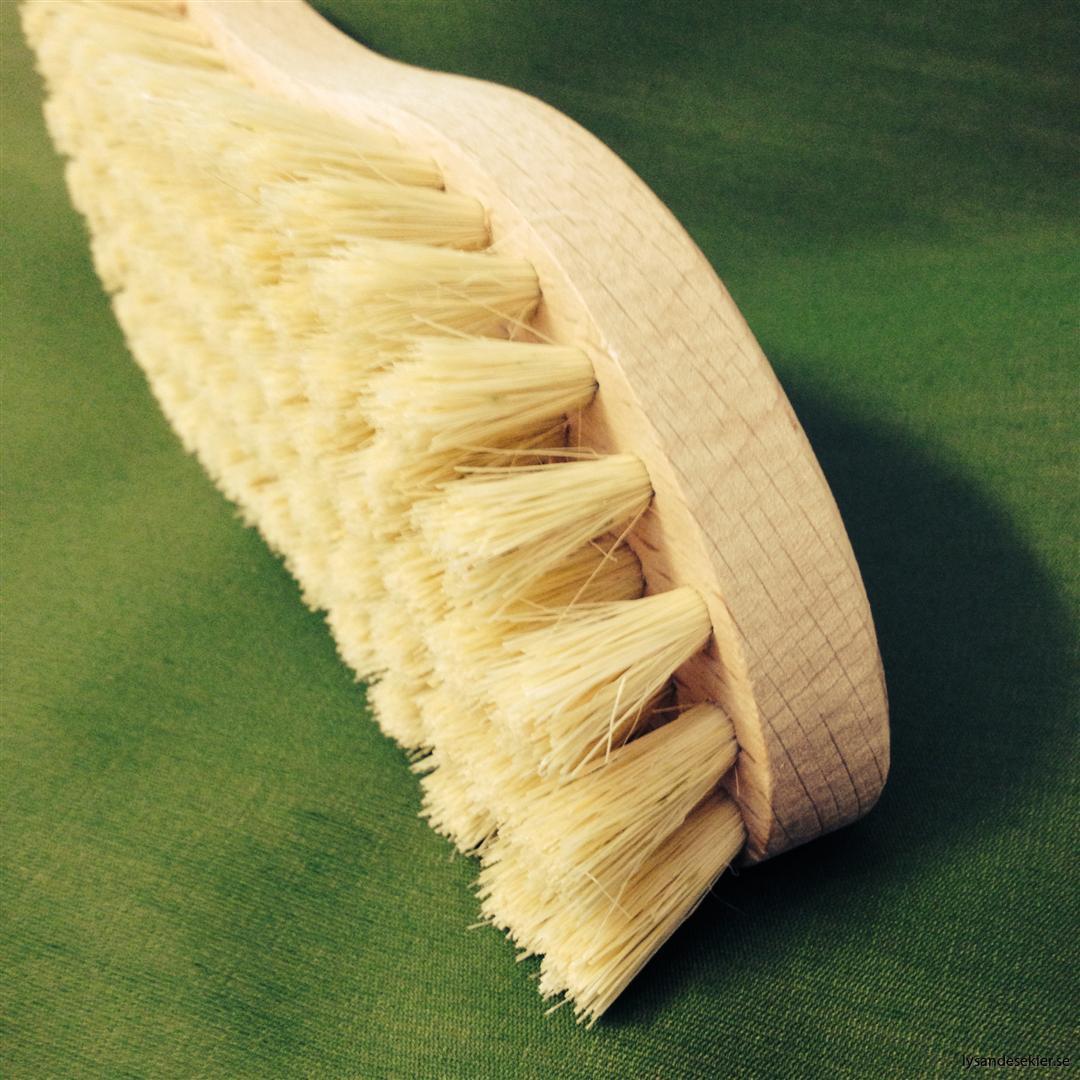 skurborste trä (4)