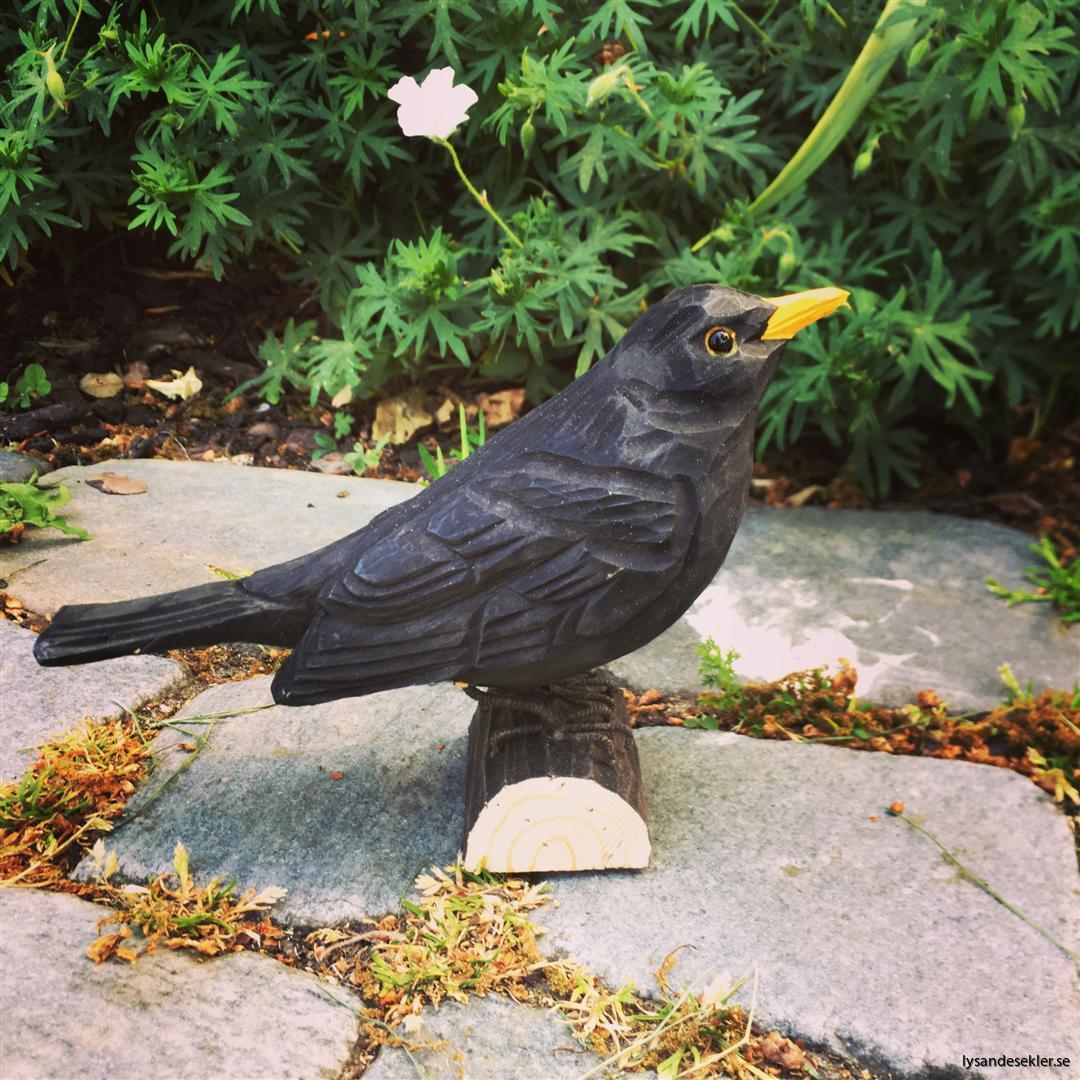 koltrast  handsnidad fågel trä snidad dekoration