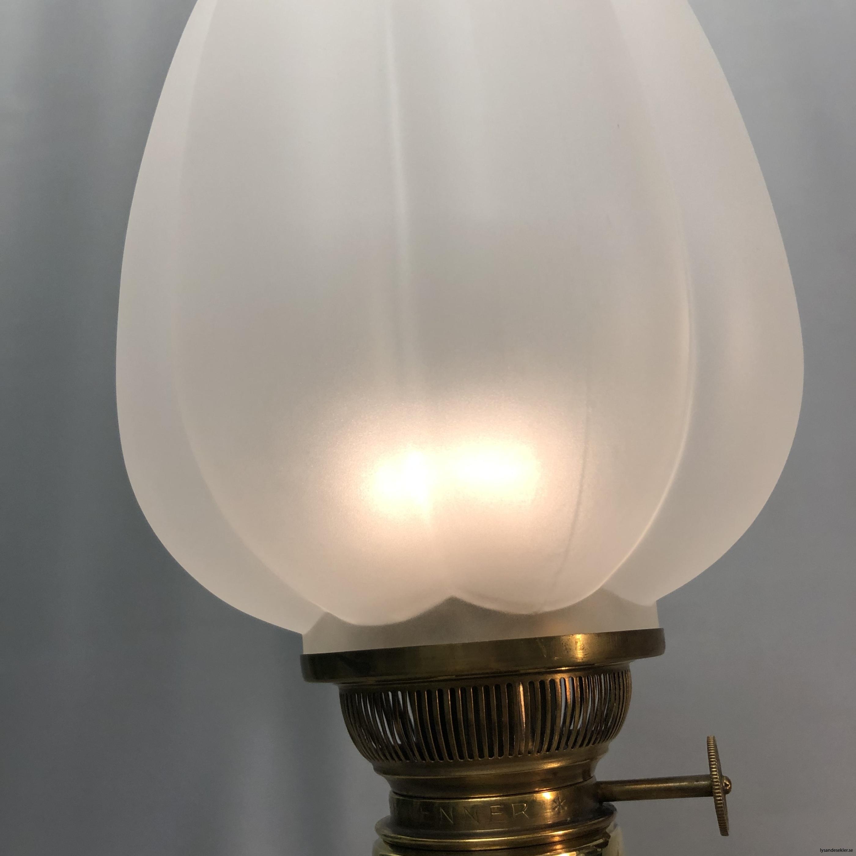 fotogenlampskupa kupa till fotogenlampa tulipan tulpan tulpankupor kupor26
