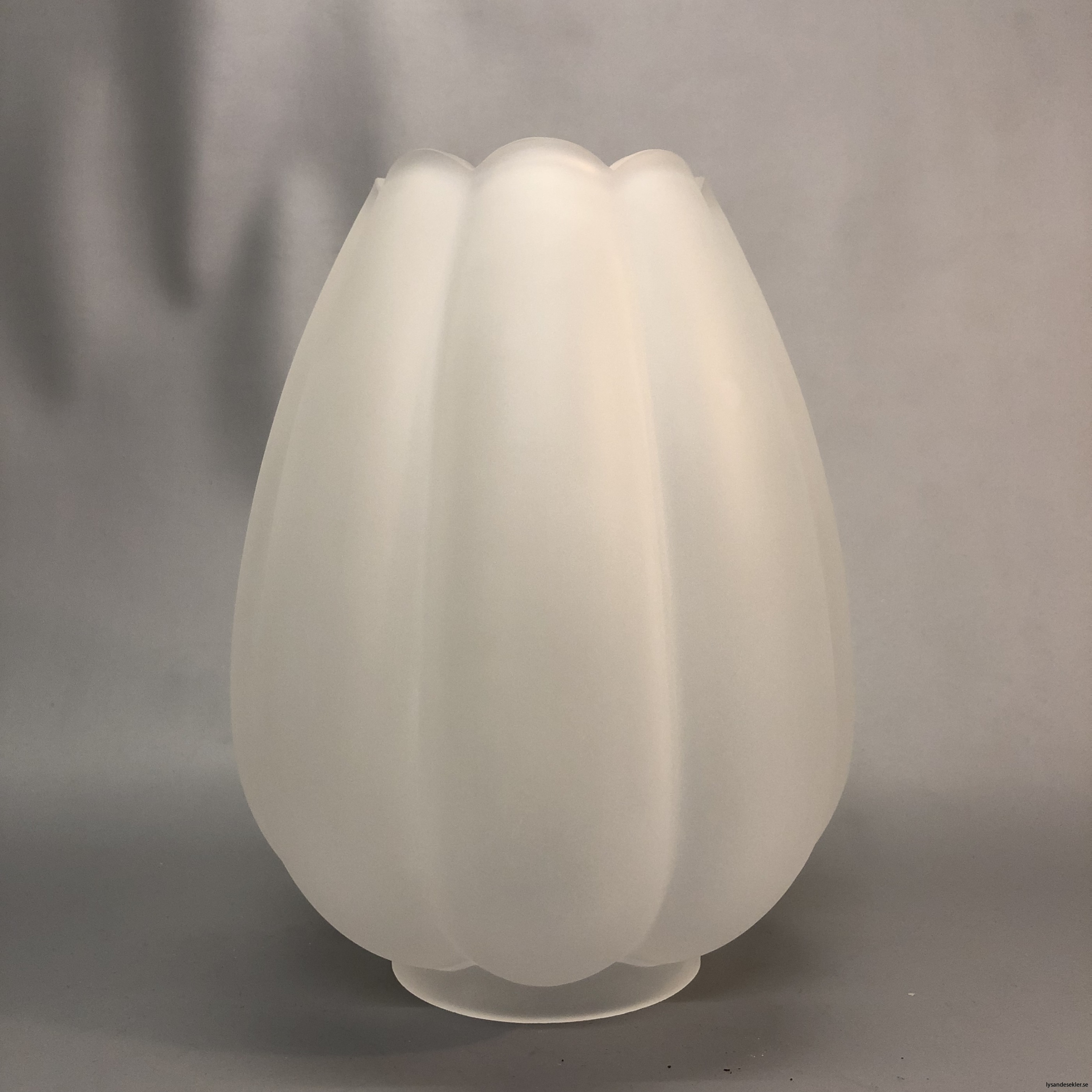 fotogenlampskupa kupa till fotogenlampa tulipan tulpan tulpankupor kupor19