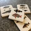 4 st glasunderlägg Fiskar - Fiskmönstrade glasunderlägg - 4 olika i ett set
