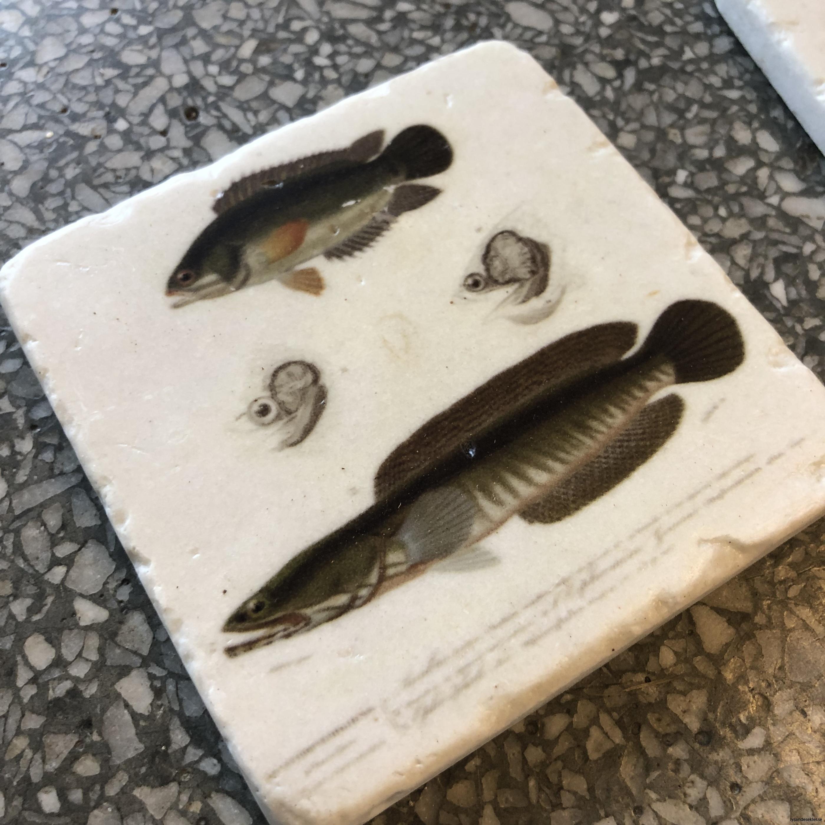 glasunerlägg fiskar2
