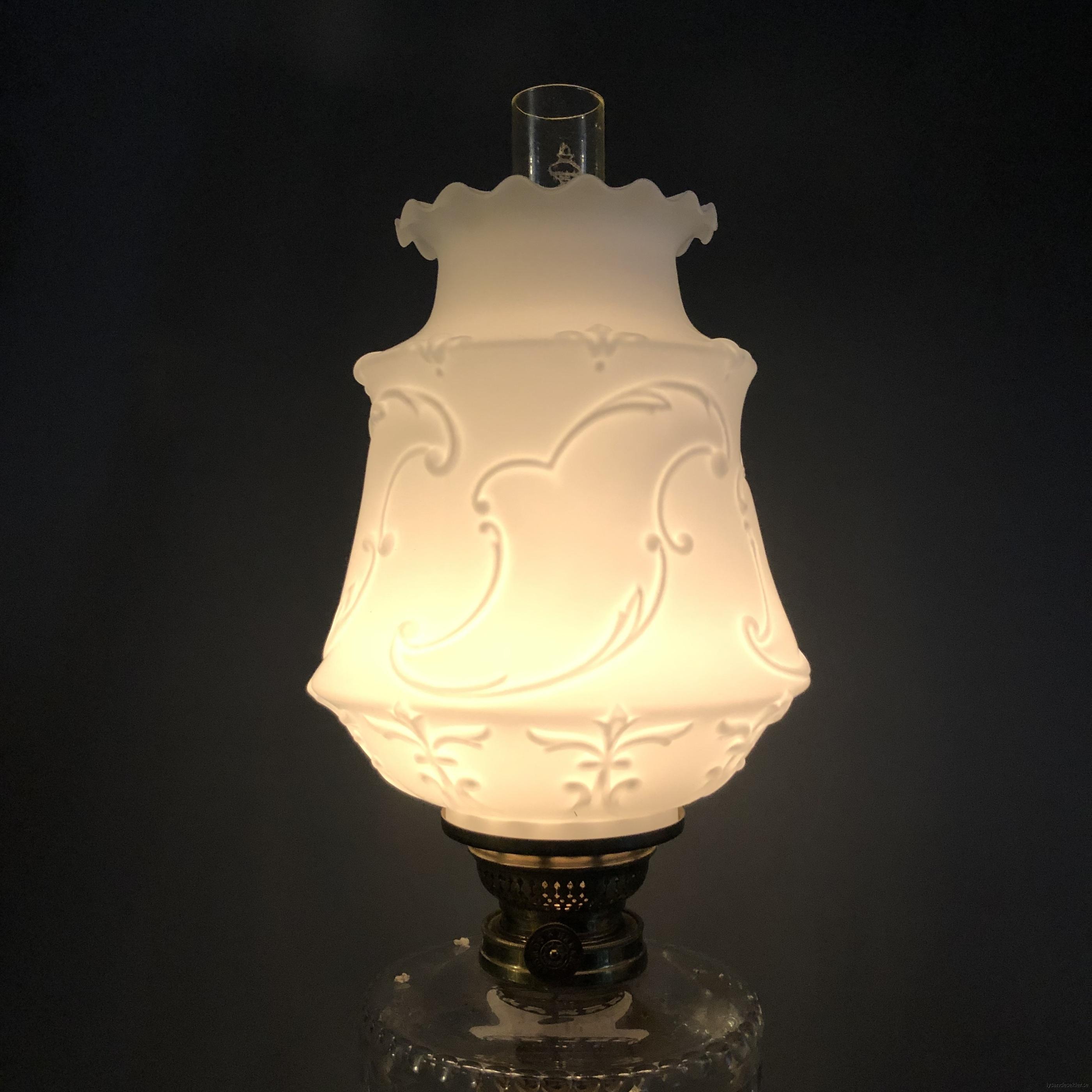 matt vit tulpankupa till fotogenlampa 1
