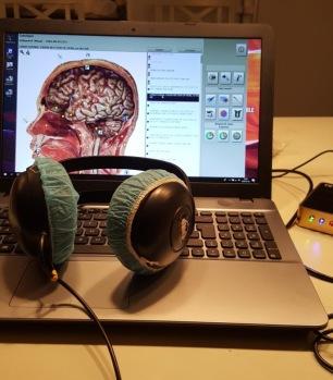 Scanning/frekvensterapi