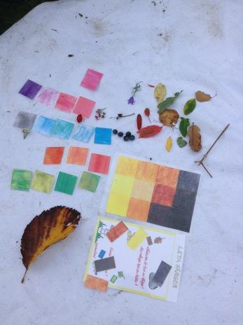 Ute i skogen med femårsgruppen och tittar på naturens olika färger.