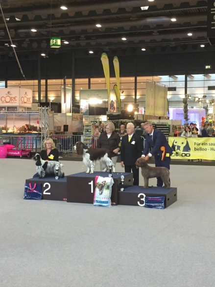 Anette & Martin Nilssons Multi CH. Bonebreaker's Championessa BIG-3
