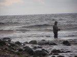 havsörings fiske i december