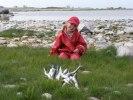 Lyckat Näbbgädde fiske