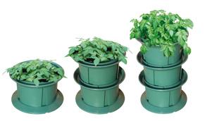 Odlingssystem för potatisodling på höjden. - Odlingssystem potatis