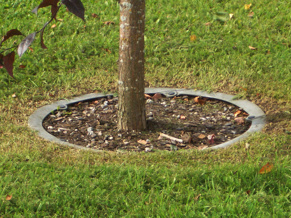 Trädvårdsringen