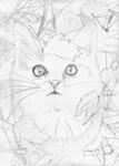 Autumn Cat SKETCH