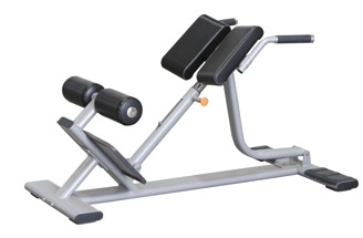 SL43 Back Extension Bench