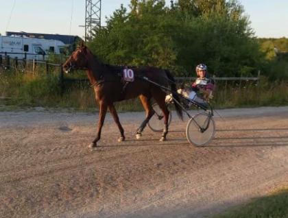 Friendwithbenefits tar sin andra seger på Gotland på ett väldigt fin sätt! Visby 12 september