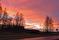 015 Solnedgång maskrosvägen Vargön