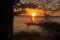 soluppgång 8