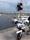 V.20 Sandvikshamn på Öland från Anne Georgsson